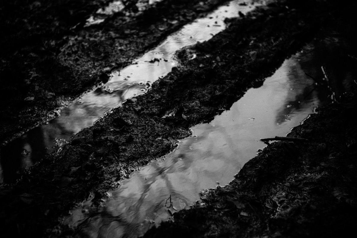 Reflets laissent voir le paysage